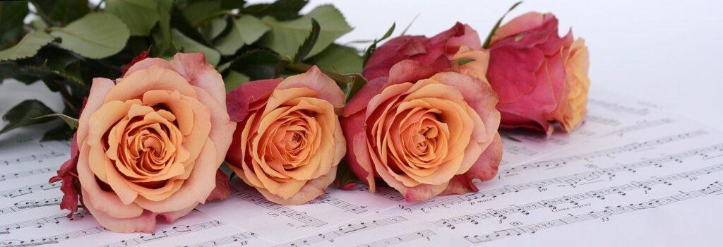 roses, flowers, sheet music